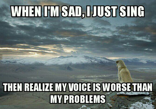 cool-dog-staring-mountains-deep-thoughts