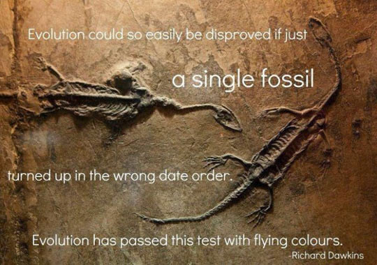 cool-evolution-date-order-quote