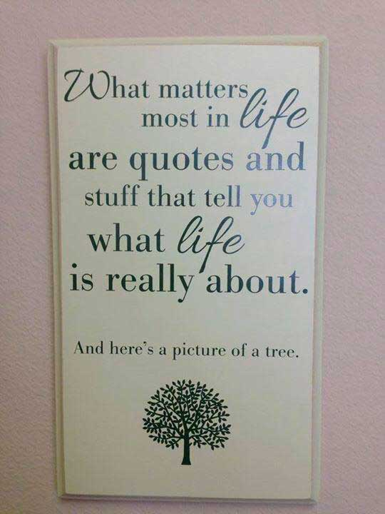 cool-life-frame-quote-tree-picture