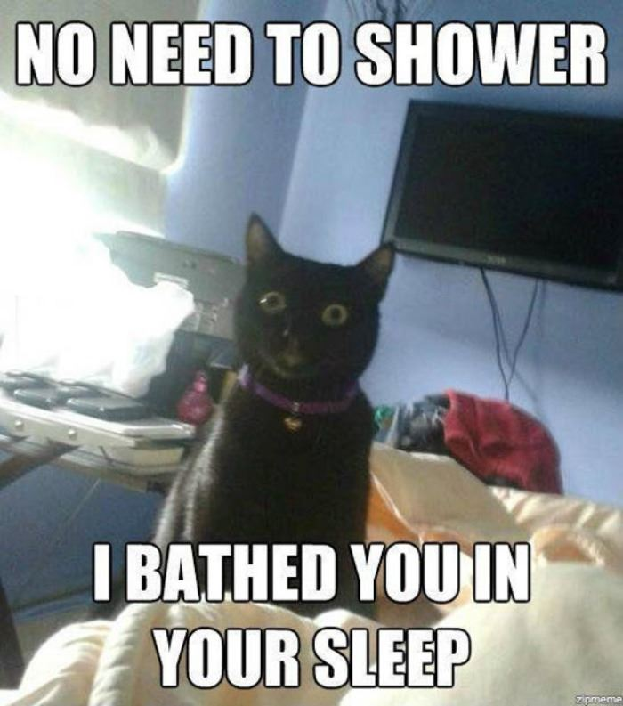 there_is_no_need_to_shower_human