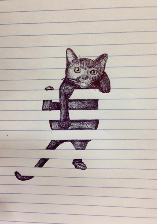 cool-cat-scribbles-drawing-cute