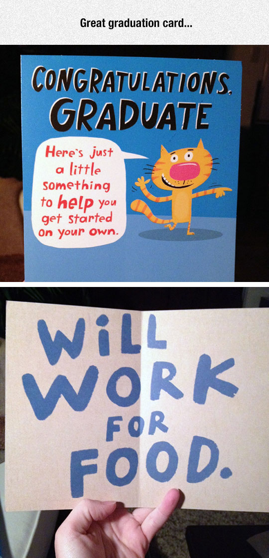 funny-graduate-card-cat-work-sign