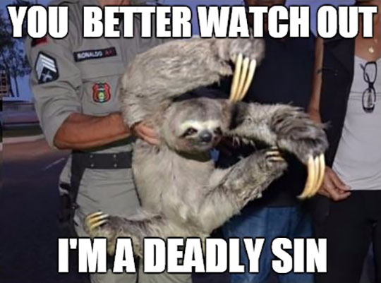 funny-sloth-claws-sin-angry