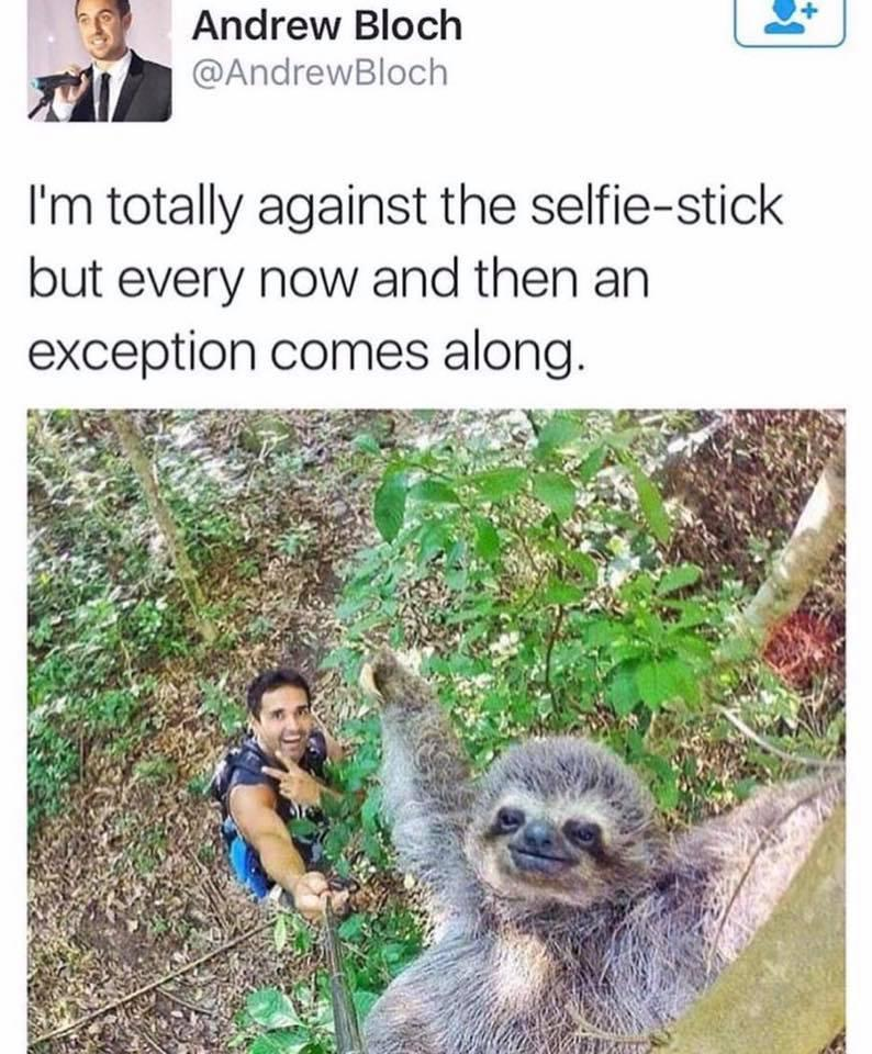 That's what selfie sticks are for